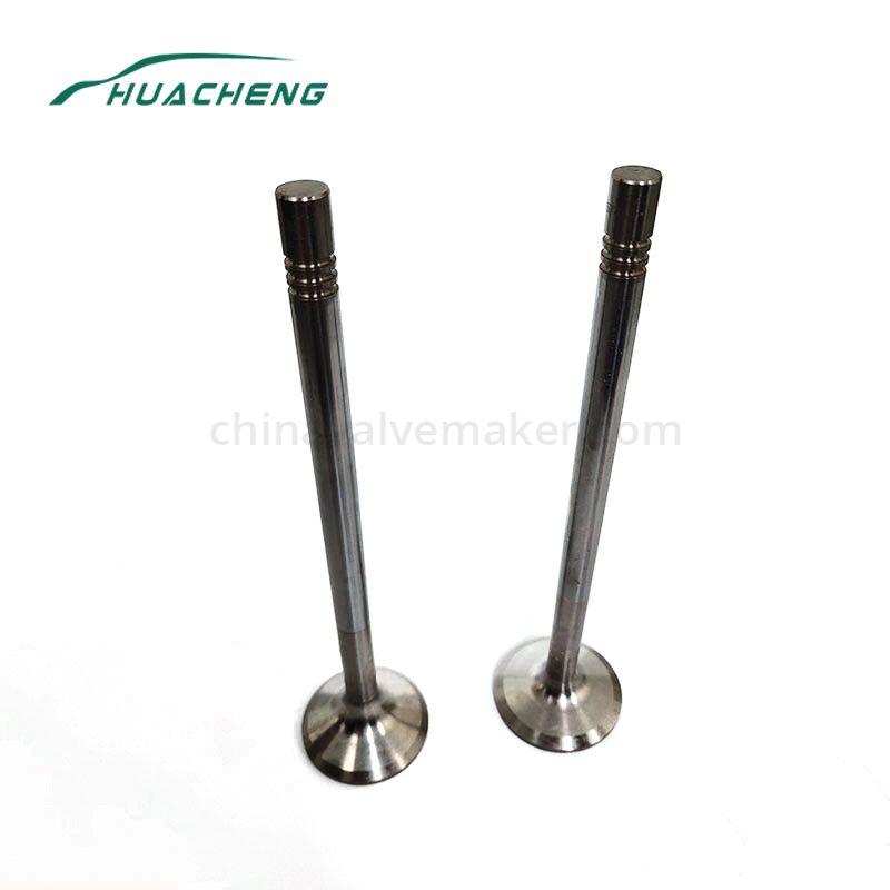 Truck parts engine valve for MAN MC11 (D2066)
